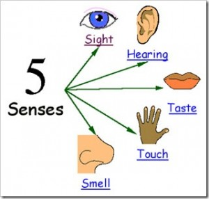 writing 5 senses